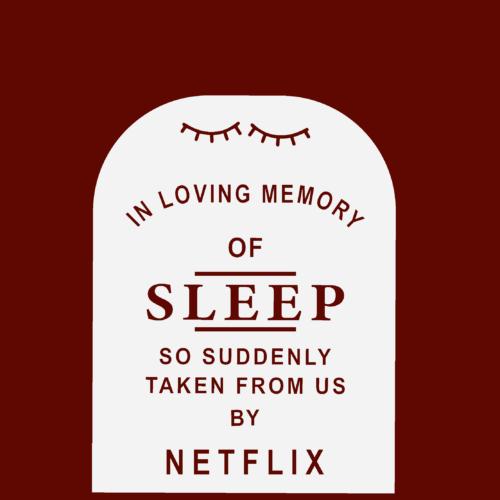 ZagZuggles_Sleep_Netflix_Design